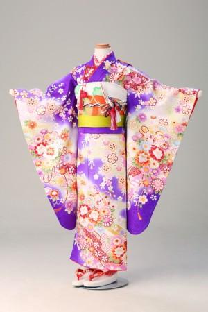 菊 桜 菱形綸子 花づくし 紫(幕張7歳夢ごこち)